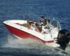 Bayliner Deck Boat Element E6 Bild 2