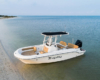 Bayliner T22CX_10