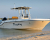 Bayliner T22CX_2